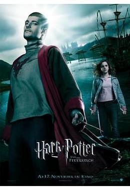 Harry Potter und der Feuerkelch - Motiv D