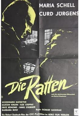 Ratten, Die